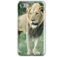 King of Africa iPhone Case/Skin