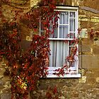 Country Window by Charmiene Maxwell-batten