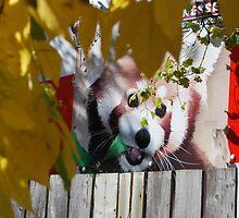 KOOL Neighbor! by Aritheeagle