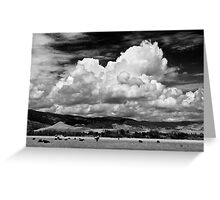 Colorado Cattle Ranch In Black and White Greeting Card