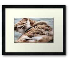 I'll Be All White Soon......... Framed Print