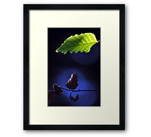 Two Seasons in One Day Framed Print