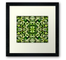 Ivy leaves Framed Print