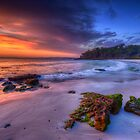 Jervis Bay by Ian English