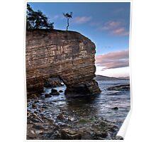 Fossil Cove, Tasmania Poster