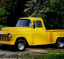 """""""Old Yeller"""" by Larry Trupp"""