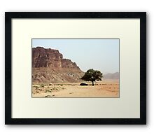 Tree in the Desert Framed Print