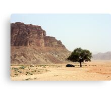Tree in the Desert Canvas Print