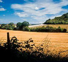 Towards Sharpenhoe from Sundon Hills by Geoff Spivey