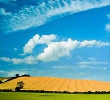 Lilley Bottom, Hertfordshire by Geoff Spivey
