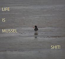 Life is Mussel shit by nick board
