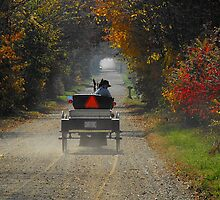 A fall drive down a country road by jammingene