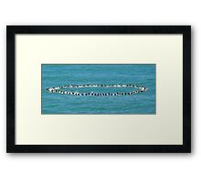 Andy Irons Memorial Paddle Out, Bells Beach 6 Nov Framed Print