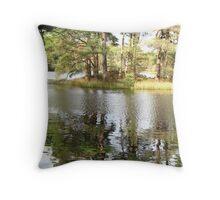 High Dam D1 Throw Pillow