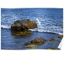 The Rocky Coast Line at Point Judith, RI [3] Poster
