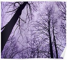 Branches 2 Purple Poster