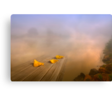 Magical foggy morning Canvas Print