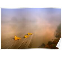 Magical foggy morning Poster