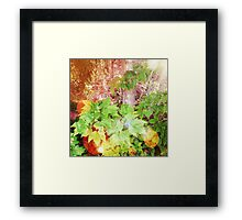 Woodland Foliage in Boothbay Maine Framed Print