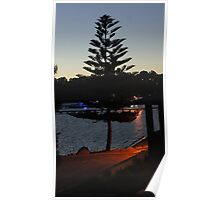 Sunset between the trees Poster