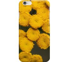 Tansy Tanacetum vulgare iPhone Case/Skin
