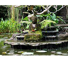Buddha - Ubud Village Bali,Indonesia Photographic Print