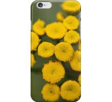Tansy Flowers Tanacetum vulgare iPhone Case/Skin