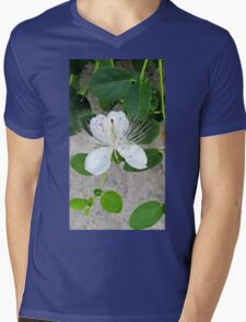 White flower of capers growing on a wall Mens V-Neck T-Shirt