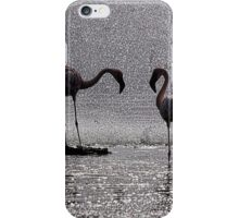 Flamingos at the Geysir of Lake Bogoria iPhone Case/Skin