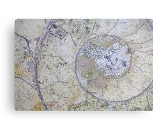 Section through an ammonite Canvas Print