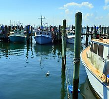 Lobster Boats at Point Judith, RI [4] by Schoolhouse62