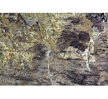 The Surface of Fossil Wood Photographic Print