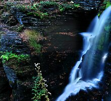 Fulmer Falls Close Up # 1 by Debra Fedchin