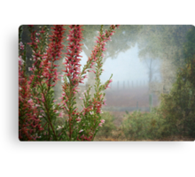 Morning Fog In My Garden (Erica) Canvas Print