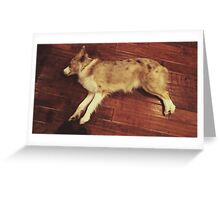 Play Dead Greeting Card