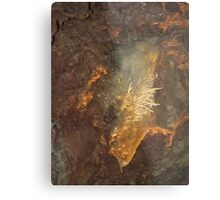 Earthly Sparkles Metal Print