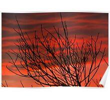 Sunrise - Johanna Beach, Victoria Poster