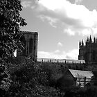 York Minster by Ant101
