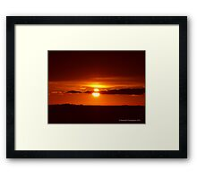Never a Dull Moment - Nature Framed Print