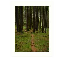 Faerie Forest, Austria 2015 Art Print
