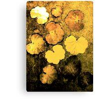 Novembers Garden 5 Yellow - Monoprint Canvas Print