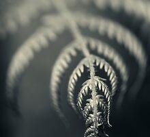 Silver folds by Vikram Franklin
