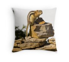 Gold Mantled Ground Squirrel  Throw Pillow