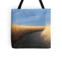 Path of Light Tote Bag