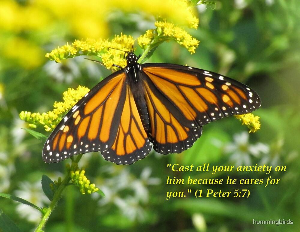 1 Peter 5:7 by hummingbirds