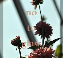 Say No to Glass Ceilings by zetaco
