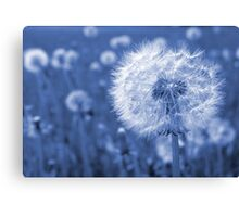 Time-peace  Canvas Print