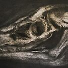 Skull- chalk & charcoal by KatieEBligh