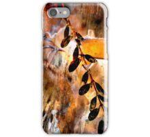 Thaw iPhone Case/Skin