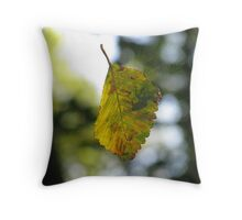 Spider shadow Throw Pillow